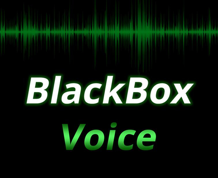 BlackBox Voice
